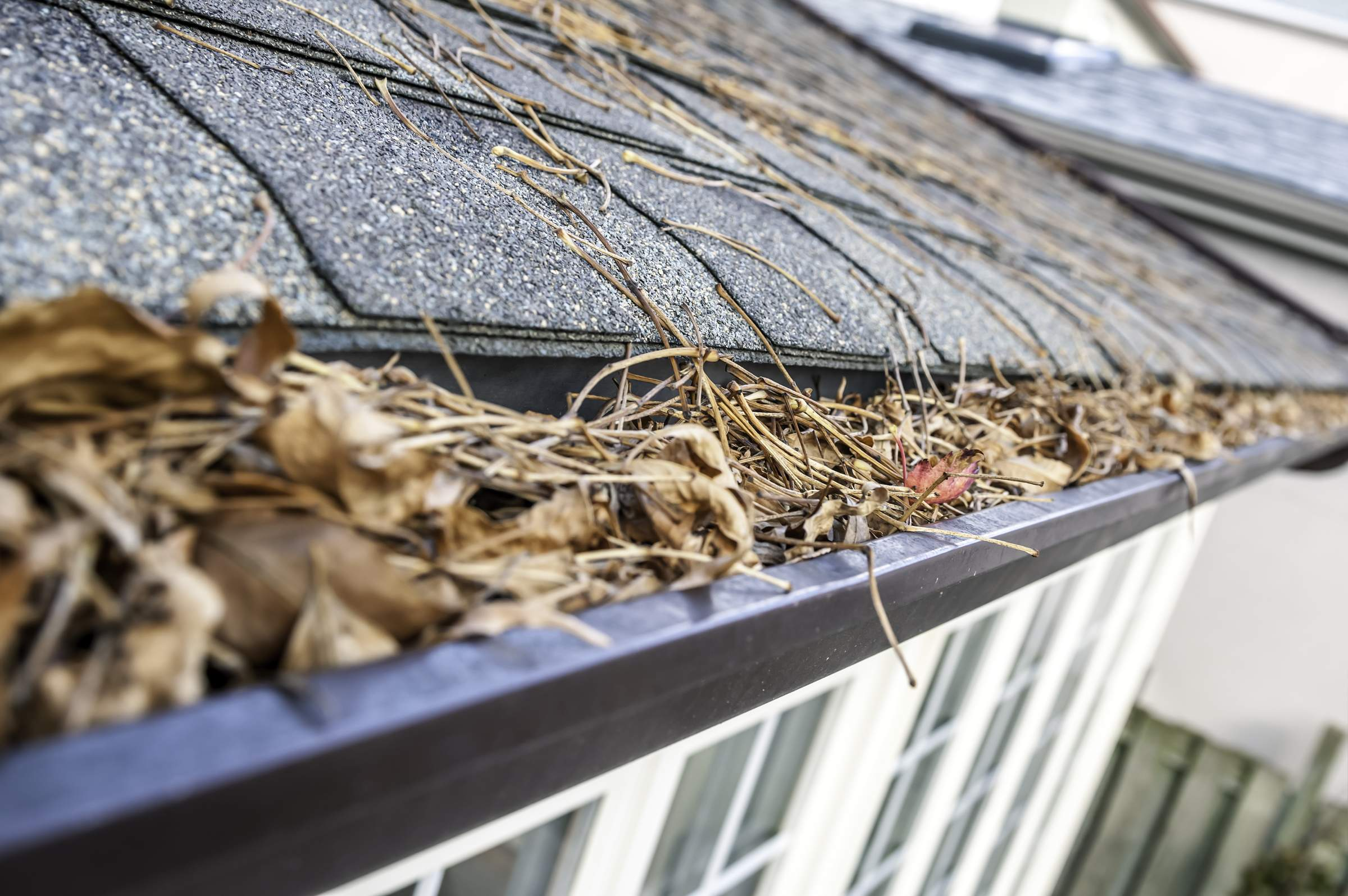 Why Is Gutter Cleaning Important?