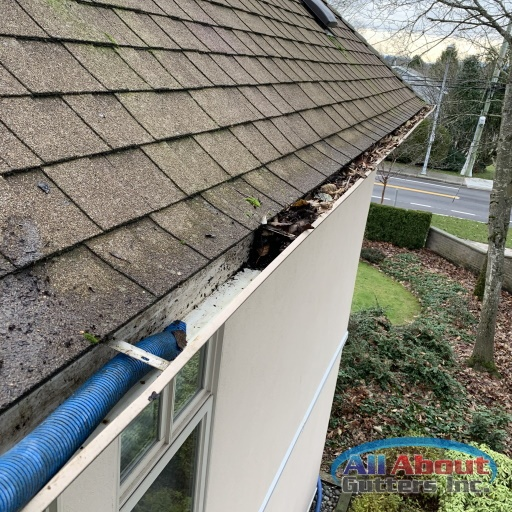 Gutter Cleaning 1 All About Gutters Inc
